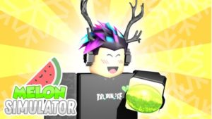Melon Simulator Codes